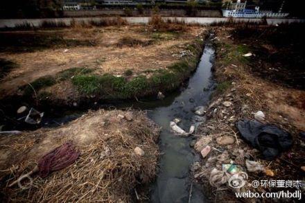 华东用污水灌田
