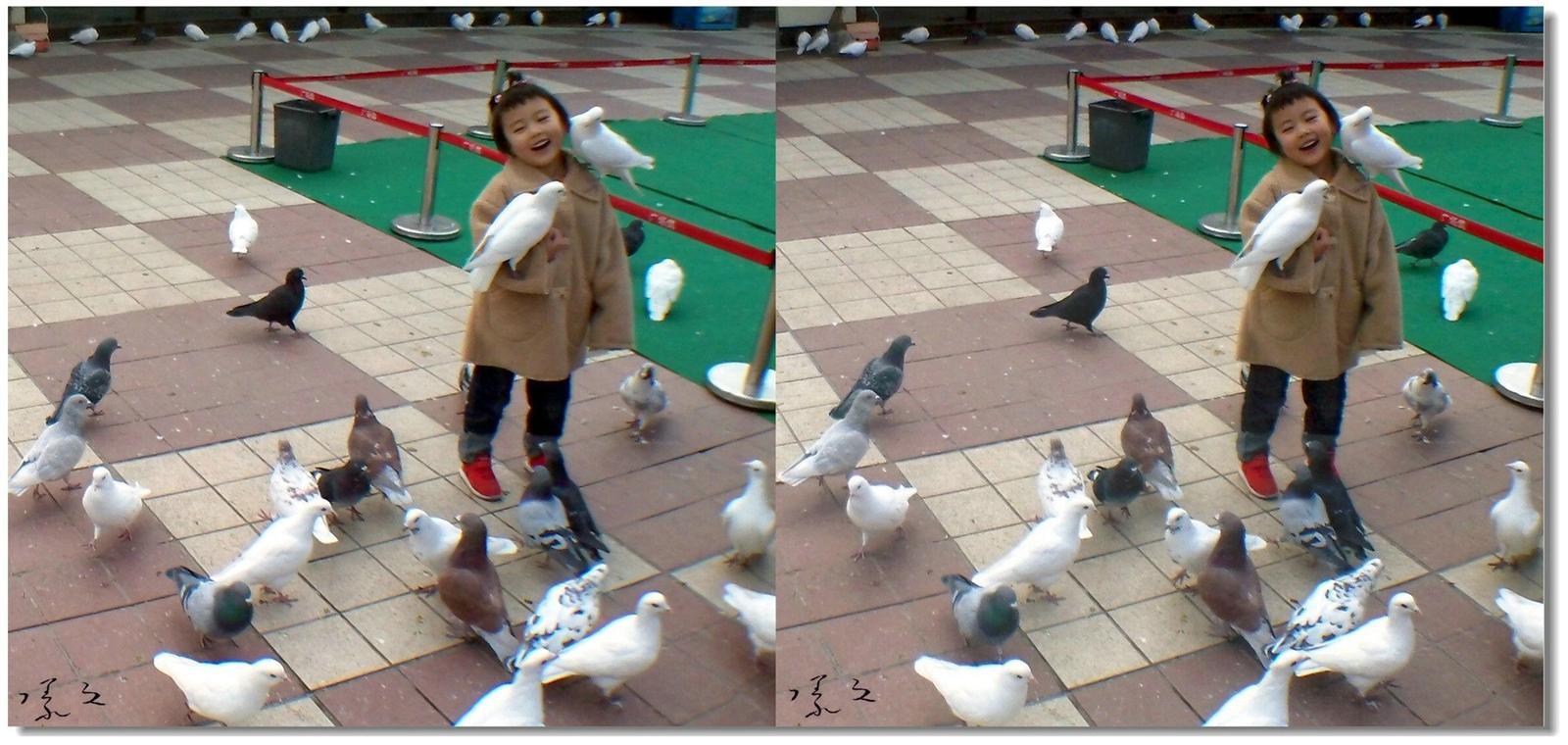 【原创】小孩与鸽子 -4