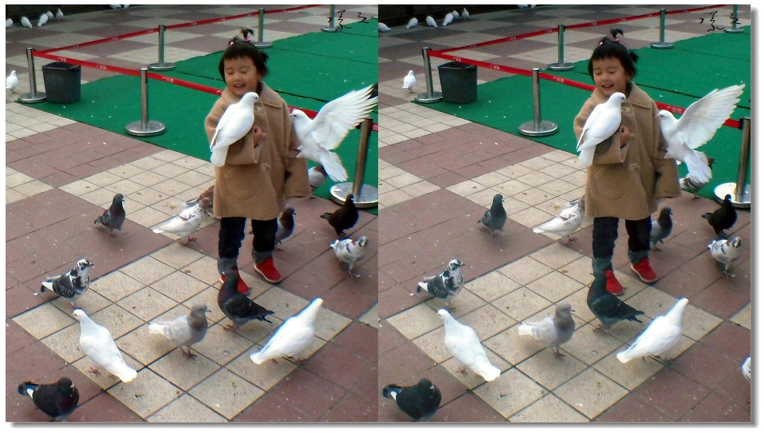 【原创】小孩与鸽子 -3