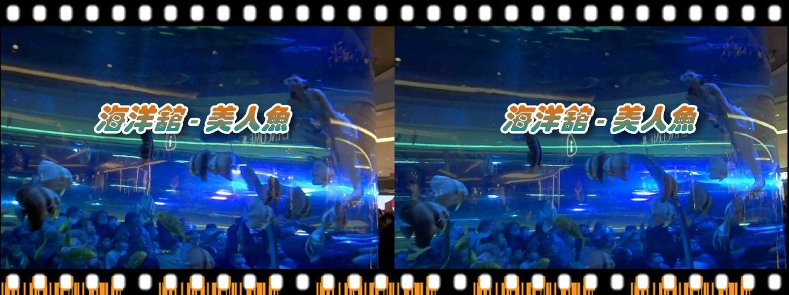 【原创】海洋馆-美人鱼 -截屏